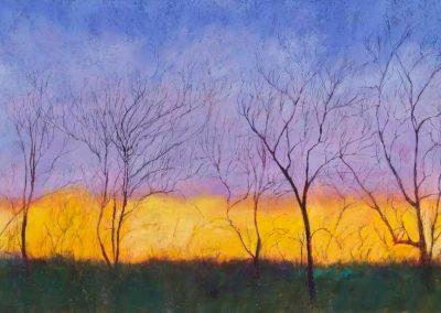 """""""Night Hawk Walk"""" by Enid Wood"""