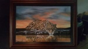 Leopard-at-sunset