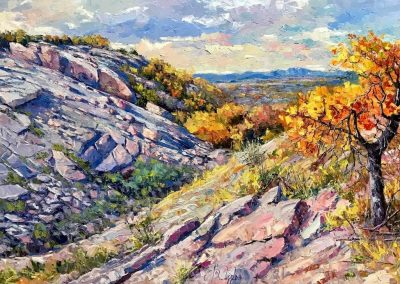 """Enchanted Rock"" by Roberto Ugalde"