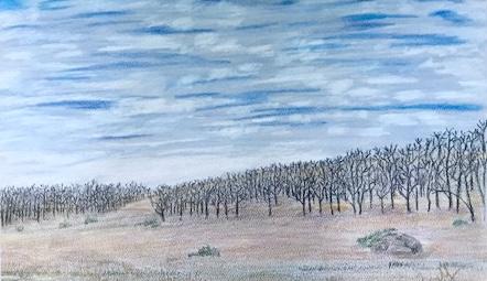 Praise to the Land- Ann Yarmal, Colored Pencil