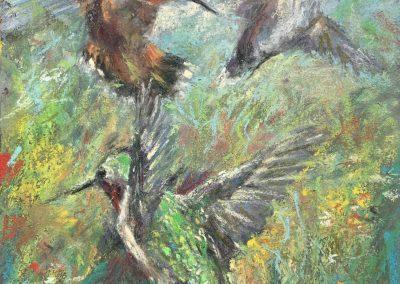 Hummingbird Dance, Pastel